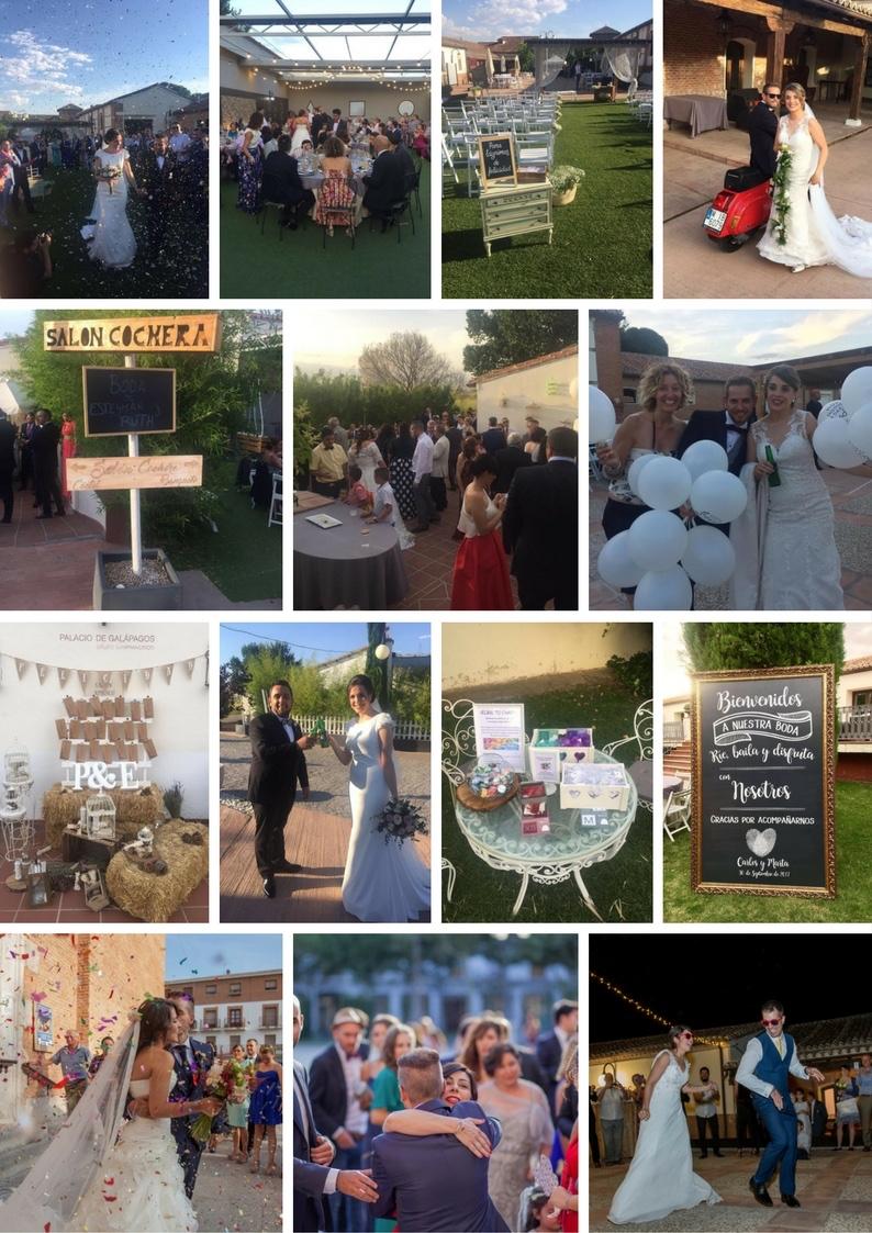 Collage bodas