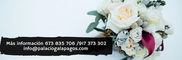 footer oferta bodas viernes palacio galapagos guadalajara