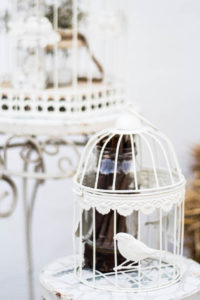 jaula decoracion bodas comuniones eventos palacio galapagos