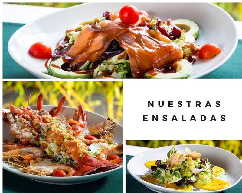 Ensaladas en Palacio de Galápagos